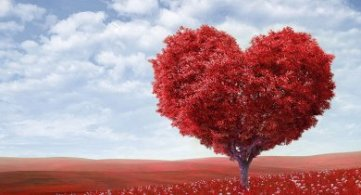 Metaphysical Definition of Love & Its Power of Protection