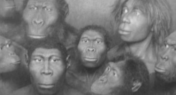 Evolutionary Development & The Genetic Alterations of Humans for '3rd Density Lessons'; 75,000 Years Ago